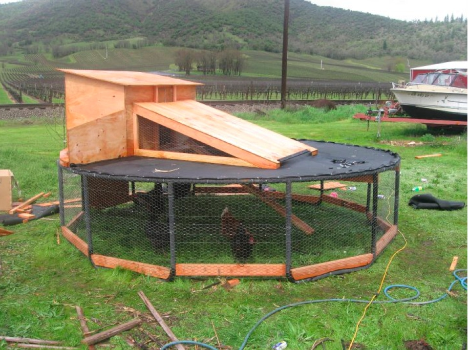 David project buy build a chicken coop on wheels for A frame chicken