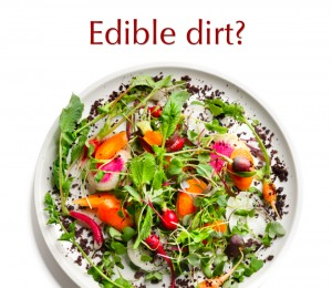 Edible Dirt Recipe