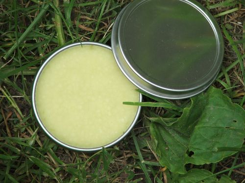How To Make Plantain Salve