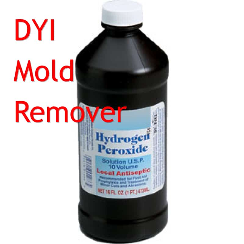 How To Make DIY Mold Remover
