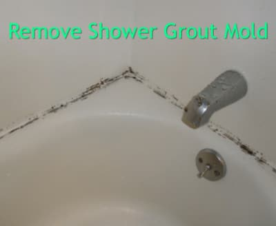 Shower grout mold homestead survival for How to clean bathroom grout mold