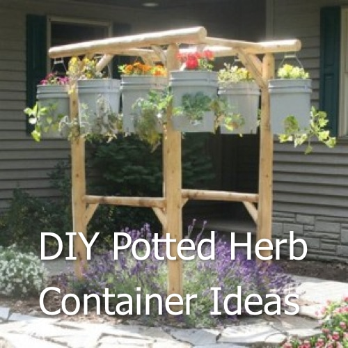 DIY Potted Herb Container Ideas