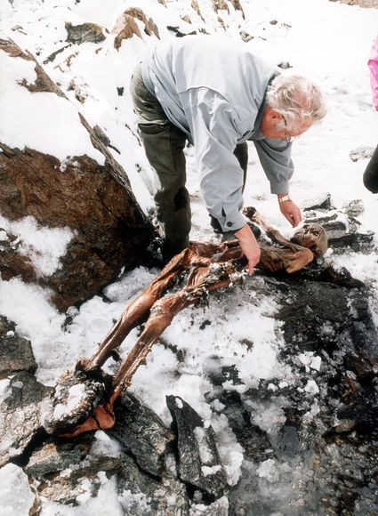 Learn From Otzi The Iceman