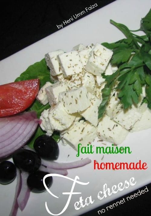 How To Make Feta Cheese Without Rennet