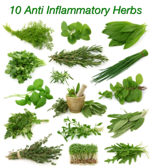 Treat Inflammation With These 10 Anti Inflammatory Herbs