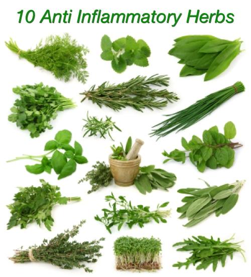 10 Anti Inflammatory Herbs