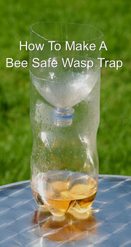 How To Make A Bee Safe Wasp Catcher Homestead Amp Survival