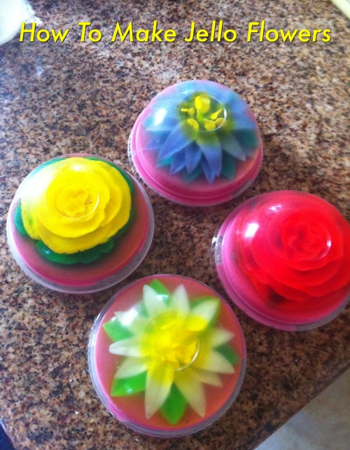 Jello Flowers