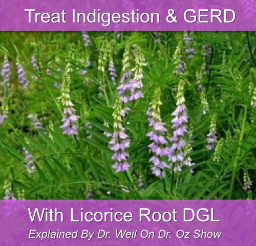 Licorice Root For Indigestion Treatment