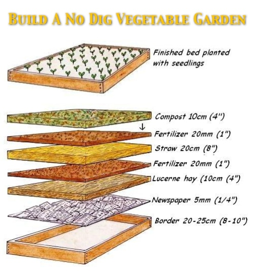 How To Build A No Dig Organic Vegetable Garden Homestead Survival