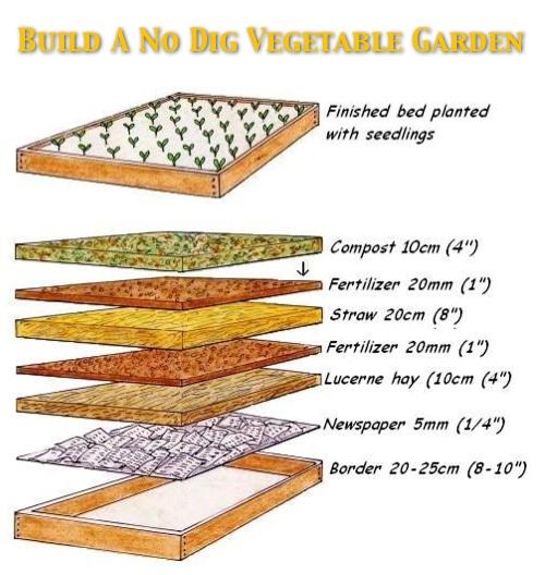 No Dig Vegetable Garden