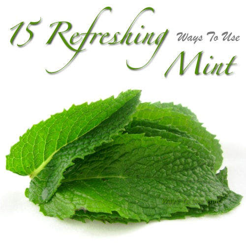 15 Refreshing Ways To Use Mint