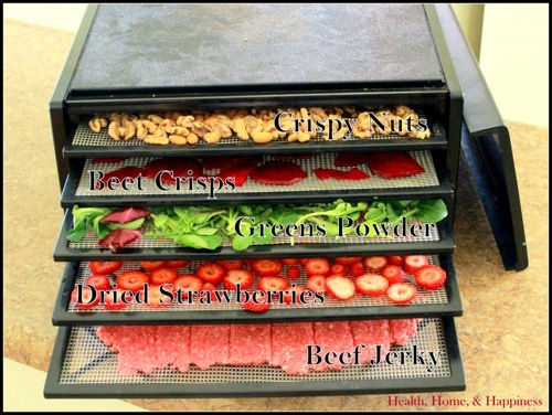 20 Dehydrator Recipes