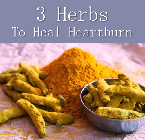 3 Herbs To Heal Heartburn