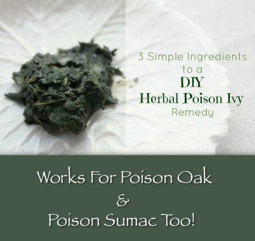 DIY Herbal Poison Ivy