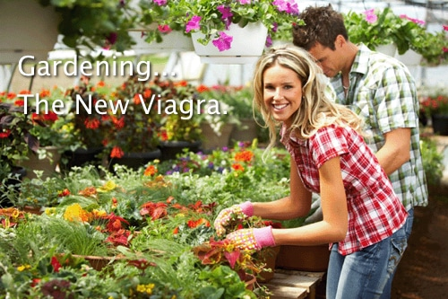 Gardening Is The New Viagra