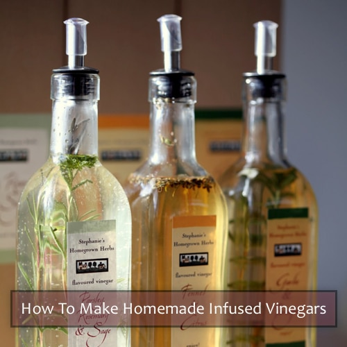 Homemade Infused Vinegar Recipes