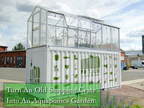 Shipping Crate Aquaponics