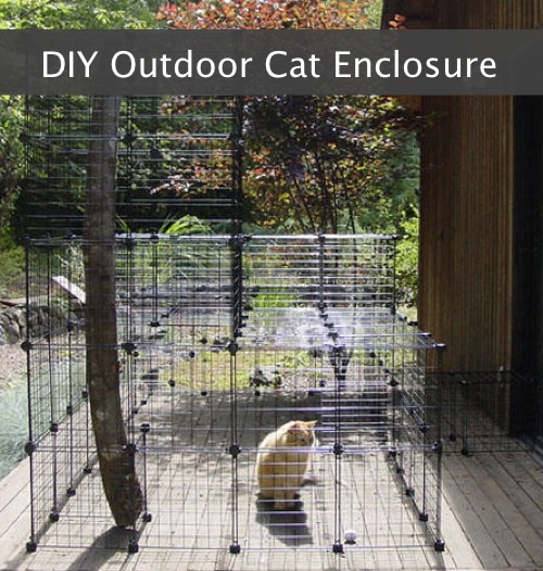 DIY-Outdoor-Cat-Inclosure