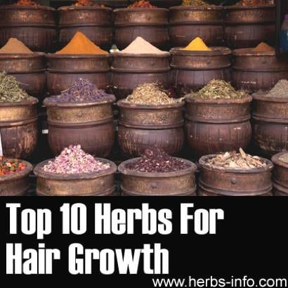 Best-10-Herbs-For-Hair-Growth