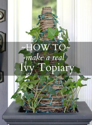 DIY-Real-Ivy-Topiary