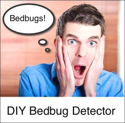 Do-You-Have-Bedbugs-Find-Out-With-This-DIY-Bedbug-Detector