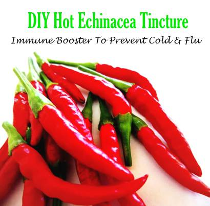 Hot-Echinacea-Tincture-Immune-Booster-To-Prevent-Cold-And-Flu