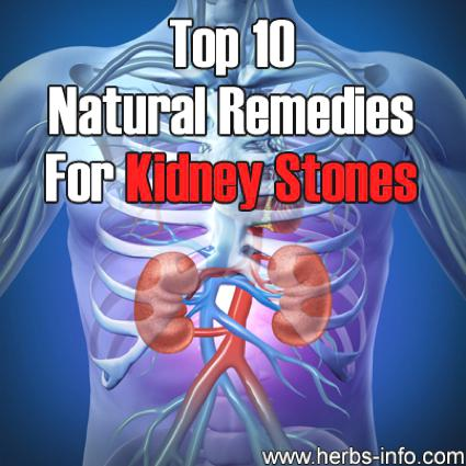 Herbal Remedies For Kidney Stones