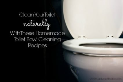 All Natural Cleaning Supplies To Clean Your Toilet