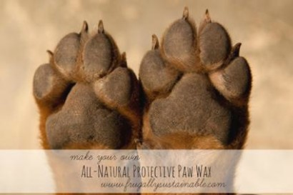 DIY-All-Natural-Protection-For-Dog-Paws