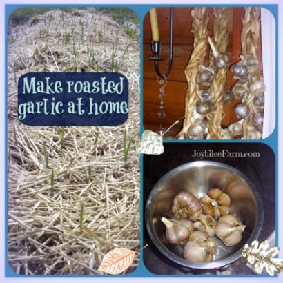 How-To-Make-Oven-Roasted-Garlic