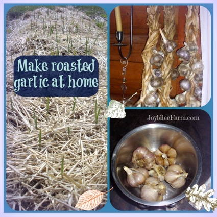 How To Make Oven Roasted Garlic