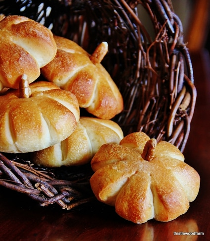 Thanksgiving Food Recipe: Create Simple Pumpkins Rolls