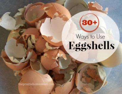 30-Ways-To-Use-Eggshells