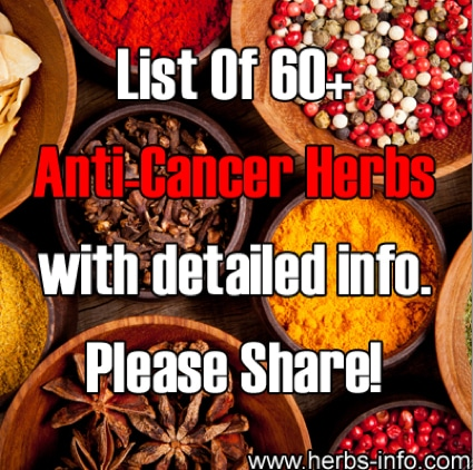Cancer Treatment Alternatives: 60 Anti Cancer Herbs