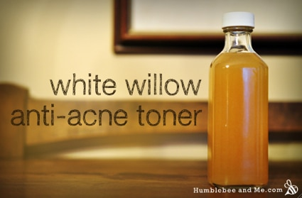 Oily Skin Solutions: How To Make White Willow Bark Anti Acne Toner