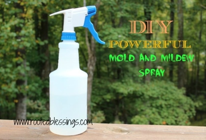 Mildew And Mold Clean Up: Powerful Mold & Mildew Spray