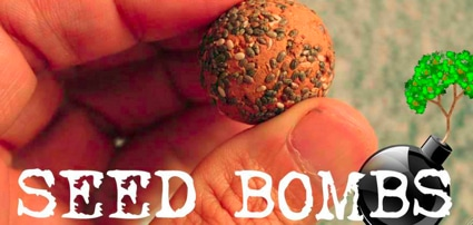 Guerilla Gardening 101: How To Make Seed Bombs