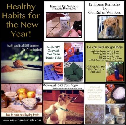 New Year Healthy Habits