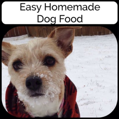 Recipe-For-Homemade-Dog-Food