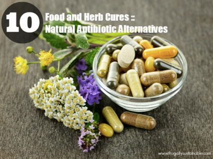 10-Natural-Antibiotic-Alternatives