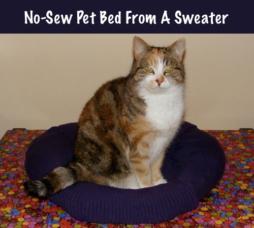 DIY-No-Sew-Pet-Bed-From-A-Sweater