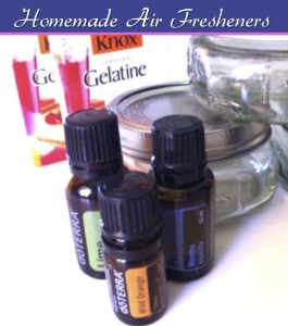 Homemade Air Fresheners