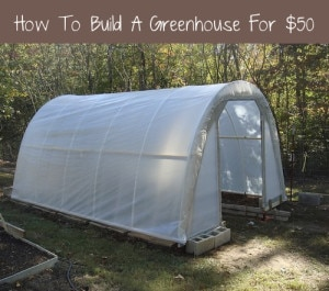 How To Build Your Own Greenhouse For $50