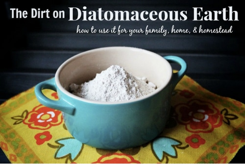 The Dirt On Diatomaceous Earth