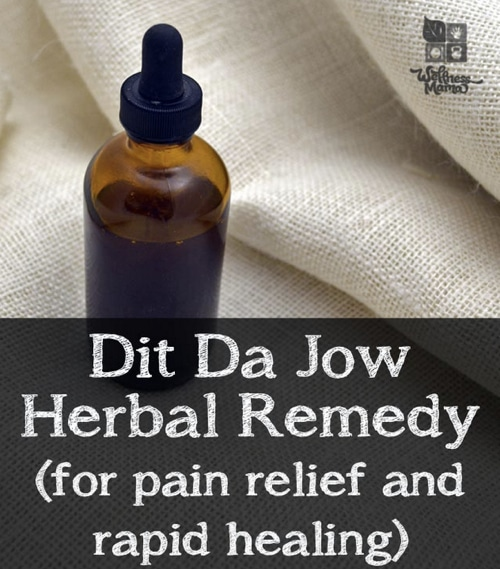 Dit Da Jow Herbal Pain Remedy