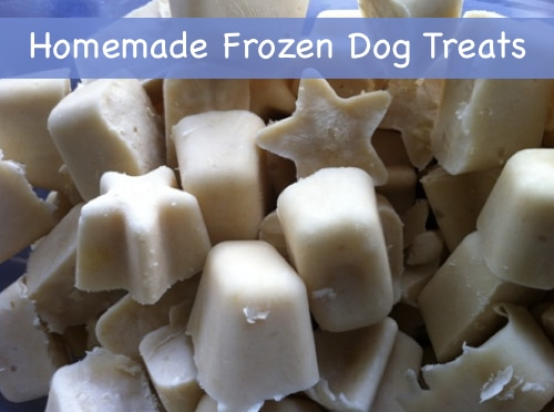 Homemade-Frozen-Dog-Treats