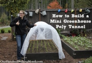 How To Build A Mini Greenhouse Poly Tunnel