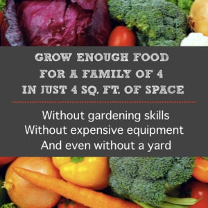 How To Grow Enough Food For A Family Of 4 In Just 4 Sq. Ft. Of Space