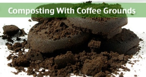 How To Make & Use Coffee Ground Compost